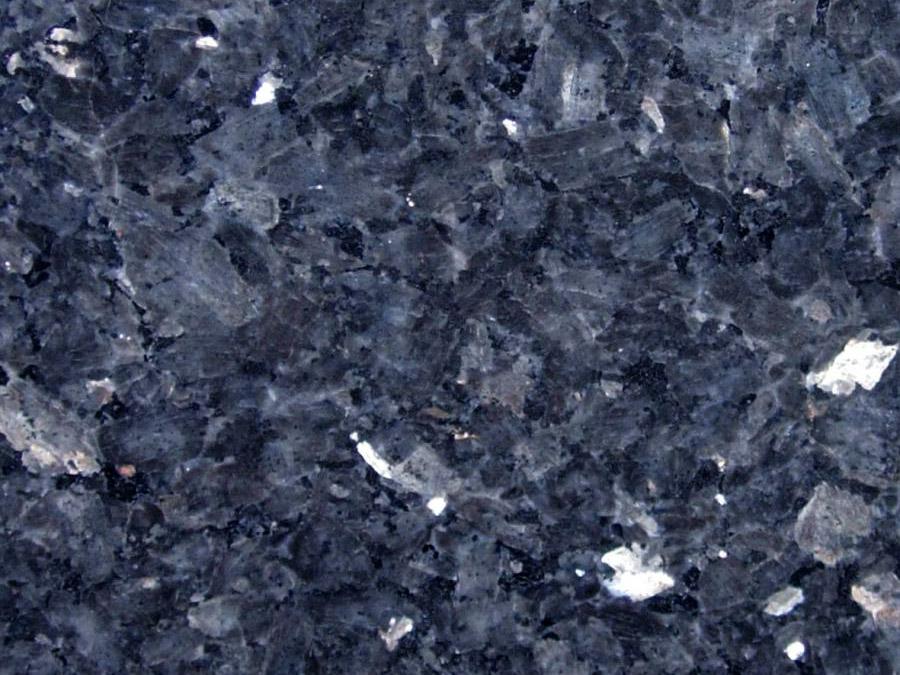 Labrador blue perl